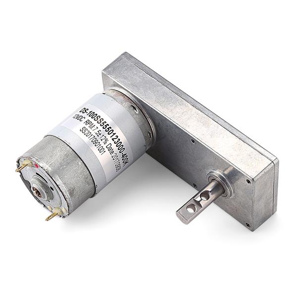 DS-100SS555 100mm DC spur gear motor